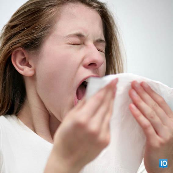 gripten-korunmak